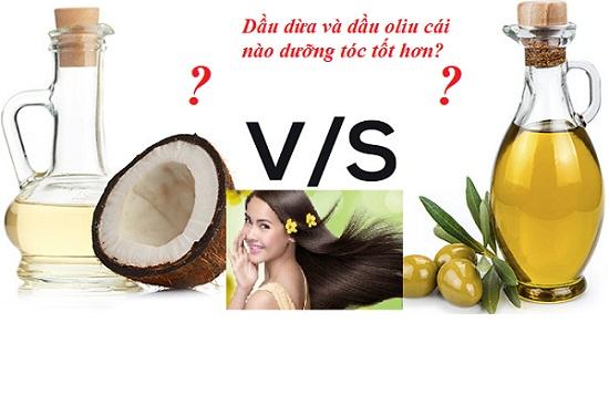 Dầu dừa hay dầu oliu dưỡng tóc tốt hơn hình 1