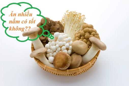 ăn nấm nhiều có tốt không hình 1