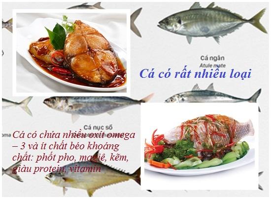 Ăn cá nhiều có tốt không? hình 2