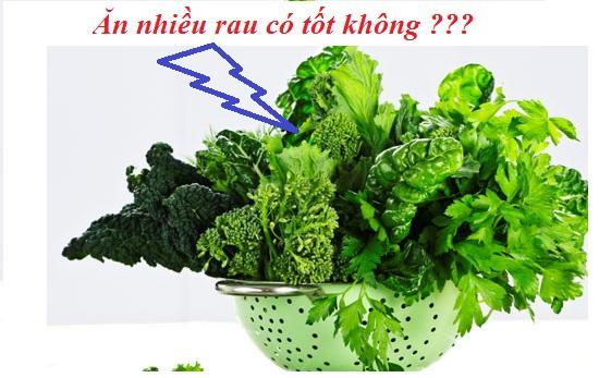 Ăn nhiều rau có tốt không hình 1