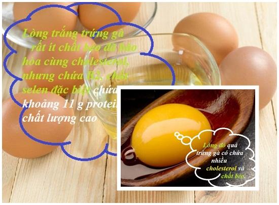 Ăn trứng gà nhiều có tốt không hình 2