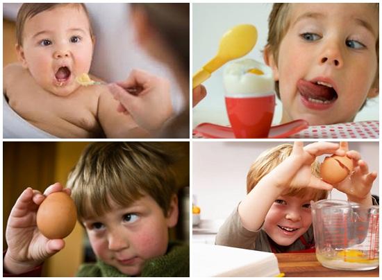 Trẻ em ăn trứng gà nhiều có tốt không hình 4