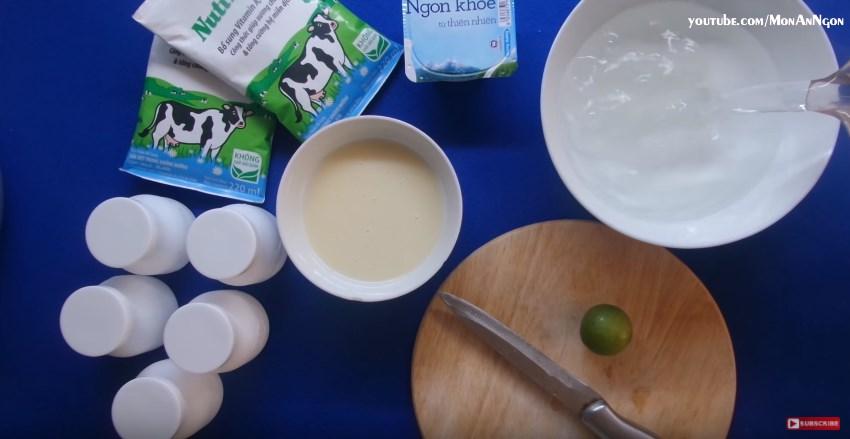 Giới thiệu phương thức làm sữa chua nha đam ngon tại nhà-hình 4