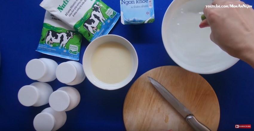 Giới thiệu phương thức làm sữa chua nha đam ngon tại nhà-hình 5