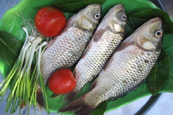 Cách kho cá chép ngon cơm ai cũng mê hình 2