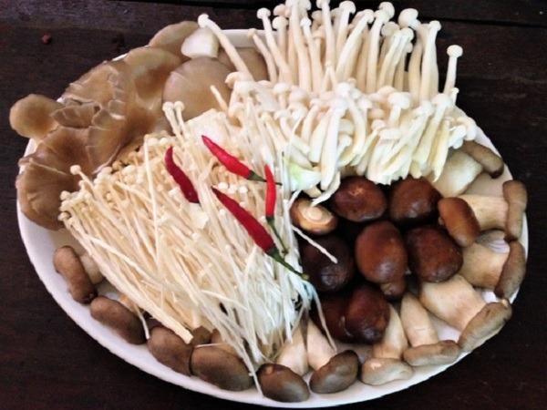 Gà nấu nấm thơm ngon bổ dưỡng cực kỳ đơn giản tại nhà hình 1