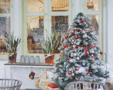 5 quán cafe vừa ấm cúng, vừa đẹp long lanh nên đến ngay trong mùa Giáng sinh
