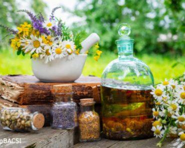 8 thảo dược giúp bạn chữa đầy hơi một cách tự nhiên