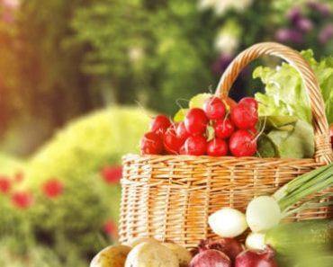 Ăn trái cây và rau củ cùng lúc có gây tác hại gì không?