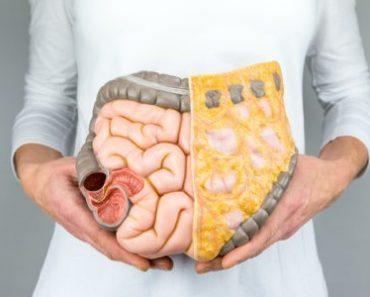 Thực phẩm giúp thanh lọc cơ thể, làm sạch đại tràng hiệu quả