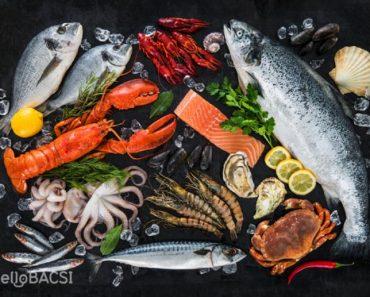 [SỔ TAY NỘI TRỢ] Cách nấu món ngon từ cá và mọi điều bạn cần biết về cá biển